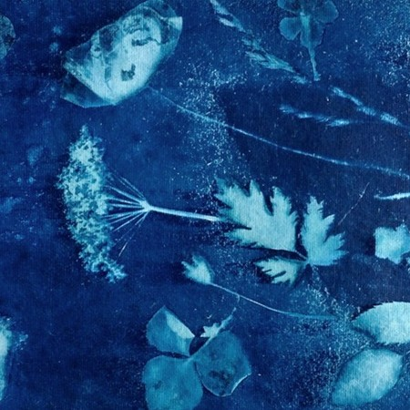 DIY: cyanotype prints - tips & trucs